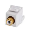 RCA Connector, White, White - RCA to IDC 110 Wiring