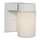 Outdoor Wall Lantern, 60W
